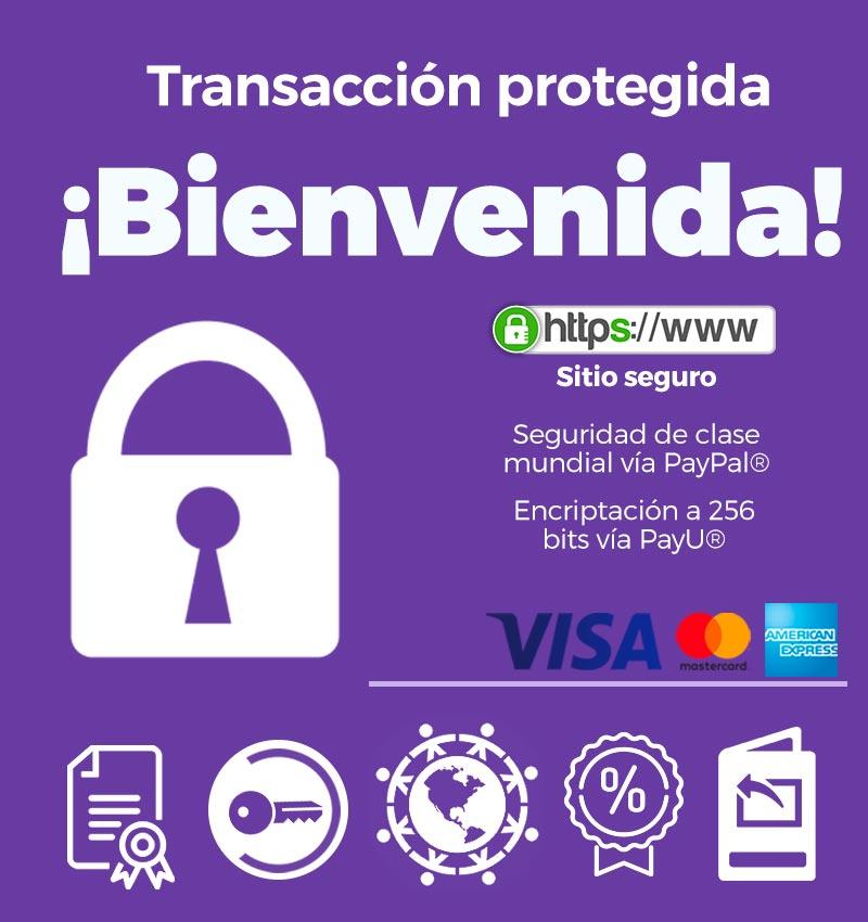 Transaccion-protejida-aupairglobal-256k