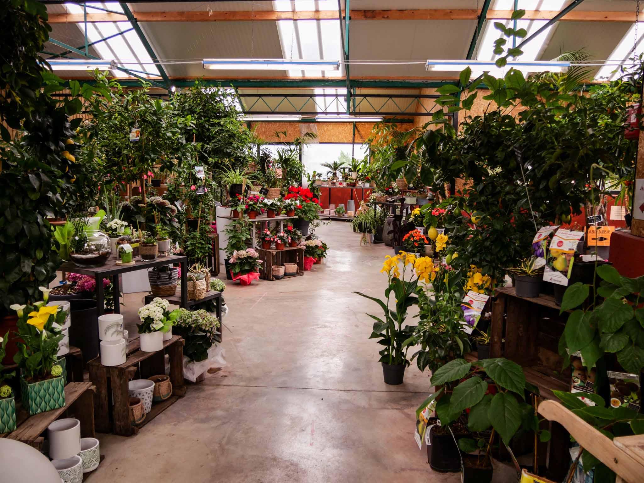 Boutique de fleurs Au Pouvoir des Fleurs Morlaix
