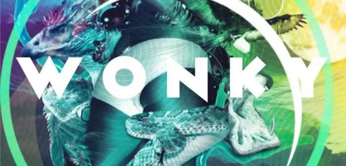 wonky_small