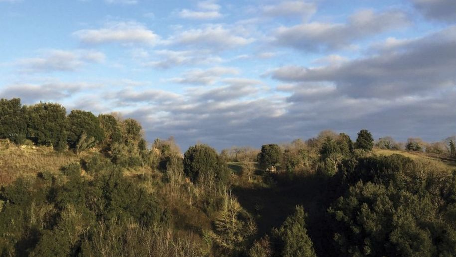 Una Somma di Piccole Cose: il significato del brano di Niccolò Fabi