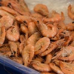 Fyshwick Fresh Food Markets, Prawns