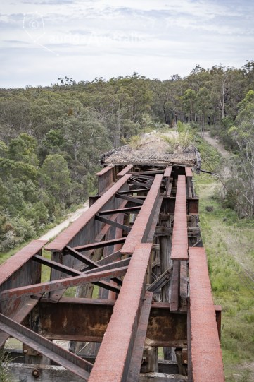 tony-creek-trestle-bridge_4