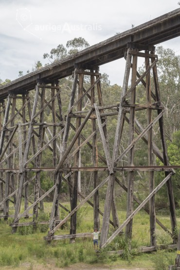 tony-creek-trestle-bridge_6