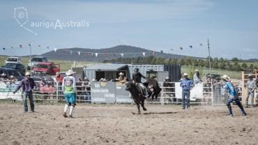Bull_Riding_21
