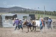 Bull_Riding_4