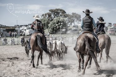 Bungendore_Cowboys_7