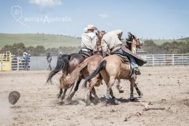 Saddle Bronc_8