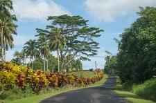 Samoa_Road_5