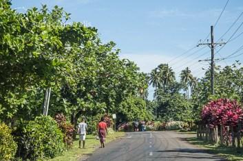Samoa_Road_8