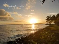 Samoan_Night_2