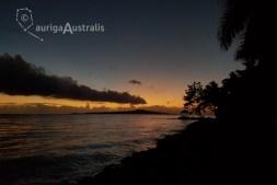 Samoan_Night_3