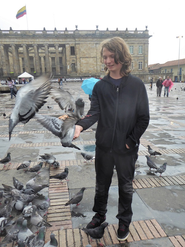 Bogota (46)