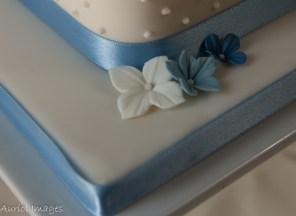 Square Cake 14