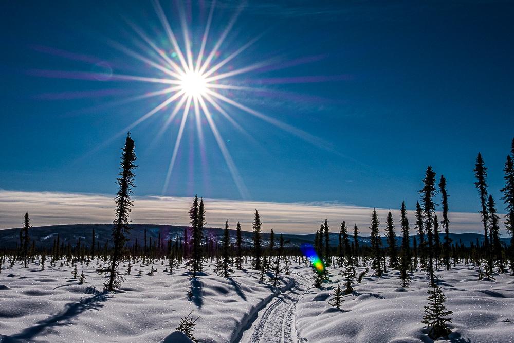 snowshoe trail winter wonder land