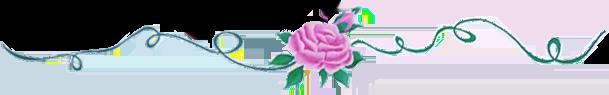 Flores - Aurora Angel Essences