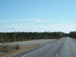This is what the large pullout on Nordale Road looks like in the summer.