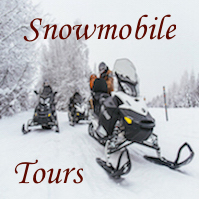 Snowmobile tours (1)