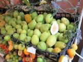 Zitrusfrüchte in Taormina
