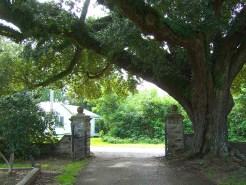 Tor zum Friedhof in Natchez