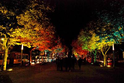 Festival of Lights 2009 1