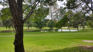 Asquith Golf Club