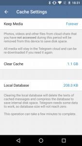 Telegram cache management