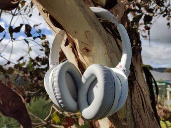 Sony WH-CH710N ear padding