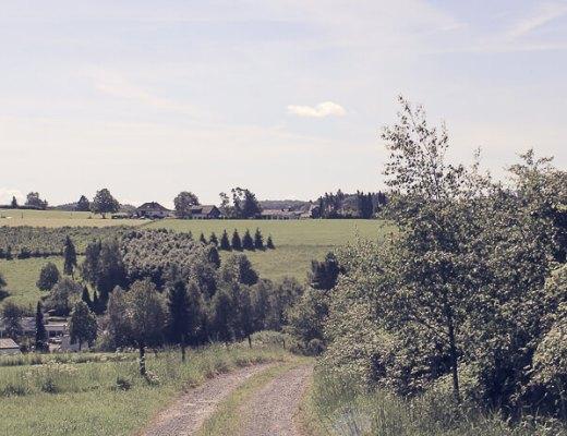 Ausblick vom Panoramasteig Richtung Wipperfürth