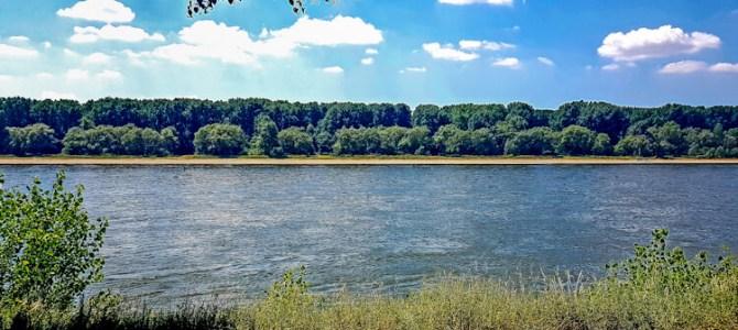 KÖLNPFAD, Etappe 11: Vom Yachthafen Zündorf zur Rodenkirchener Brücke (9,4 km)