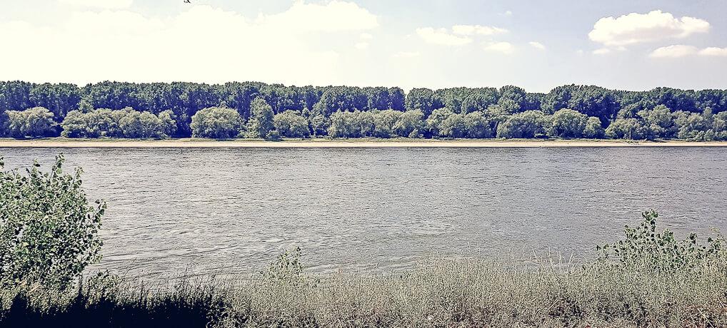 Der Rhein an der Westhovener Aue