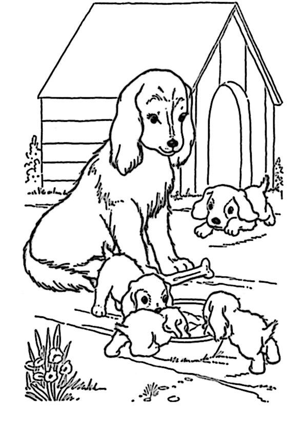 Ausmalbilder Kostenlos Hunde 5 Ausmalbilder Kostenlos
