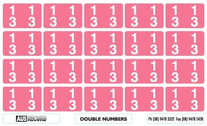 Double Number Labels. 13. Pink