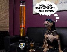 Doggies like em'