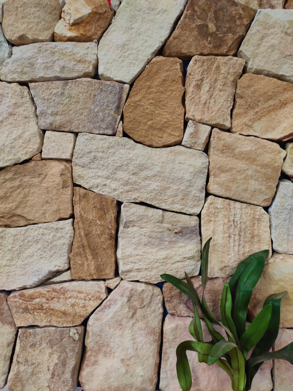 Irregular Ranch stone walling used in an interior wall design with some plant as decoration