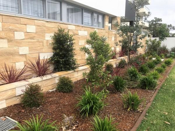 Aussietecture kirra banded sandstone walling