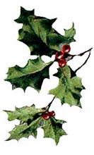 christmasholly3