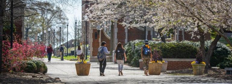 springtime on campus