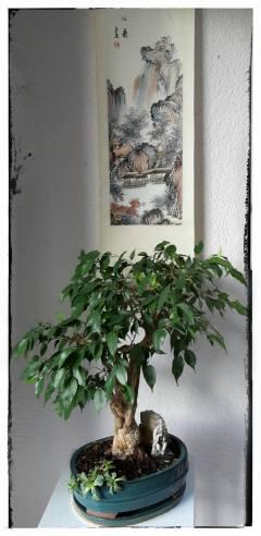 Herbst-Rollbild