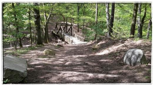 Brücke über der Downhillstrecke