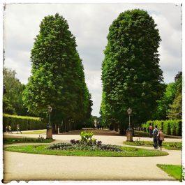 Park vom Schloss Pillnitz (Achsensicht)