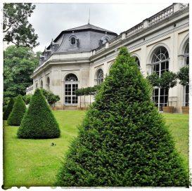 Orangerie Schloss Pillnitz (Veranstaltungsort der Bonsai-Triennale 2017)