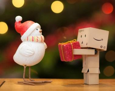 danbo box guy man person bird christmas present gift giving receiving generosity charity holiday lights tree