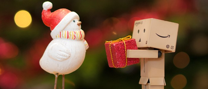danbo box guy man person bird christmas present gift giving receiving generosity charity holiday lights tree