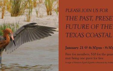 The Past, Present and Future of the Audubon Texas Coastal Program