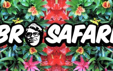 03.5 | Bro Safari | Vulcan ATX