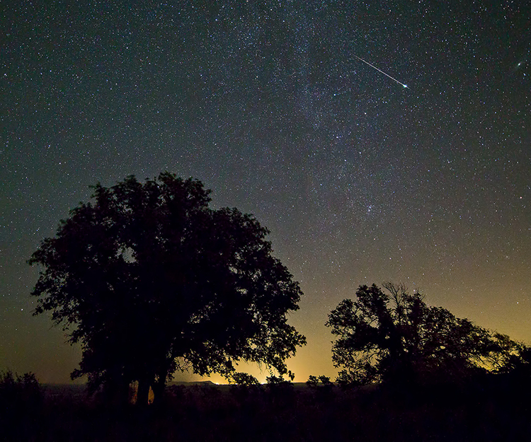 texas hill country ralph arvesen shooting star