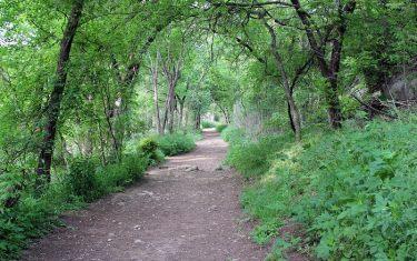 Sinner's Brunch with Violet Crown Trail Pop Up