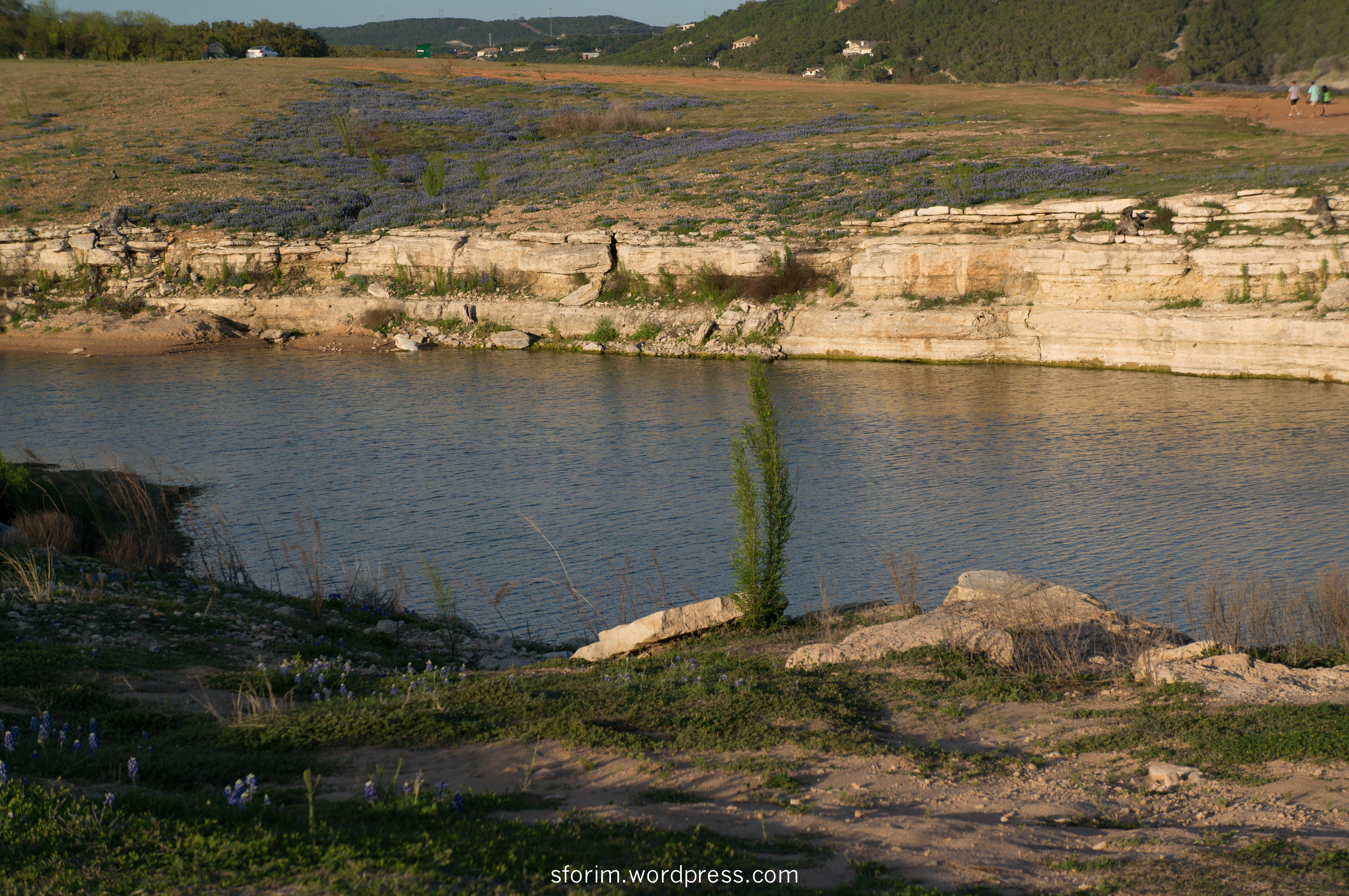 pace bend park swimming lake travis coast shore