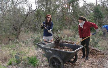 Blair Woods Restoration Day