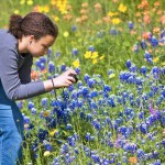 Beyond The Bluebonnet: 10 *Other* Texas Flowers You Should Be Taking Selfies With